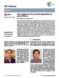 New insights into the microbial degradation of