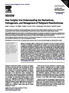 New Insights into Understanding the Mechanisms, Pathogenesis, and ...