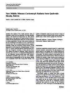 New Middle Miocene Caviomorph Rodents from ... - Springer Link