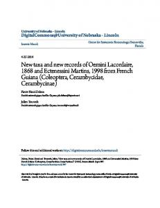 New taxa and new records of Oemini Lacordaire, 1868 and ...