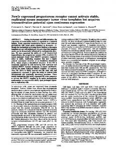 Newly expressed progesterone receptor cannot activate ... - NCBI - NIH