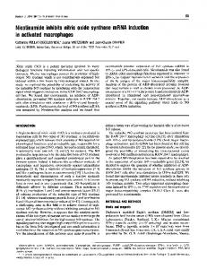 Nicotinamide inhibits nitric oxide synthase mRNA