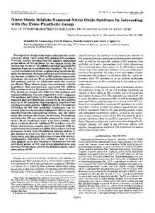 Nitric Oxide Inhibits Neuronal Nitric Oxide Synthase by Interacting with ...