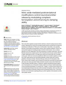 Nitric oxide-mediated posttranslational modifications control ... - PLOS