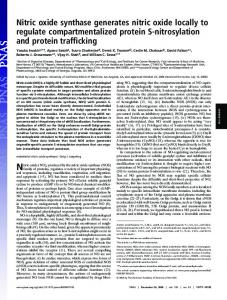 Nitric oxide synthase generates nitric oxide locally ... - Semantic Scholar