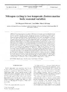 Nitrogen cycling in two temperate Zostera marina ... - Inter Research