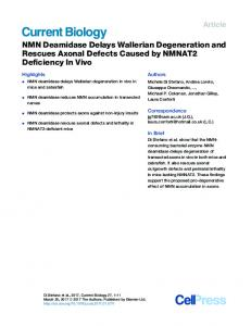 NMN Deamidase Delays Wallerian Degeneration and Rescues ...