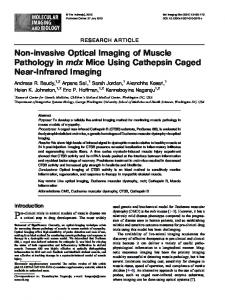 Non-invasive Optical Imaging of Muscle Pathology in mdx Mice Using ...