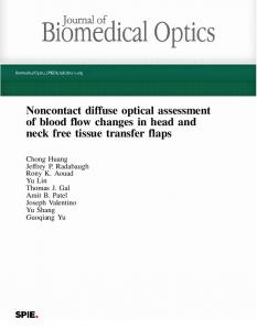 Noncontact diffuse optical assessment of blood flow changes in head ...