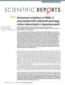 Nonsense mutation in PMEL is associated with