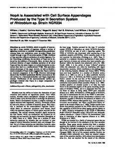 NopA Is Associated with Cell Surface Appendages ... - APS Journals