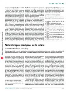 Notch keeps ependymal cells in line - Nature