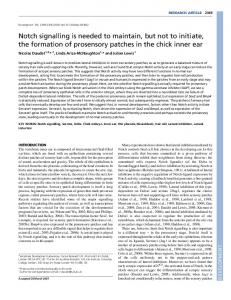 Notch signalling is needed to maintain, but not to ... - Development