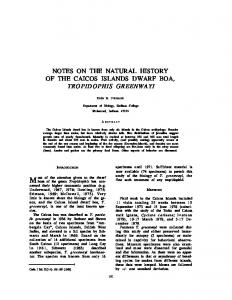 notes on the natural history of the caicos islands dwarf ...