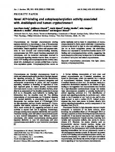 Novel ATPbinding and autophosphorylation ... - Wiley Online Library