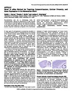Novel in silico Method for Teaching Cytoarchitecture, Cellular Diversity ...
