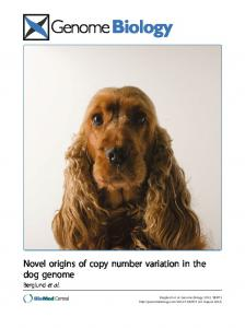 Novel origins of copy number variation in the dog genome - DiVA portal