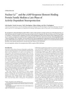 Nuclear Ca and the cAMP Response Element