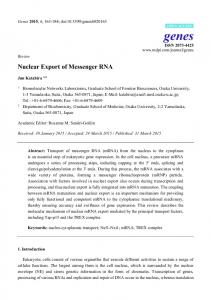 Nuclear Export of Messenger RNA