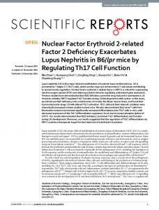 Nuclear Factor Erythroid 2-related Factor 2