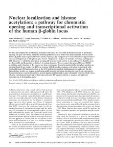 Nuclear localization and histone acetylation - Genes & Development