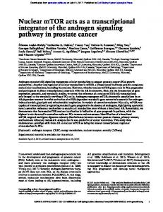 Nuclear mTOR acts as a transcriptional integrator of ...