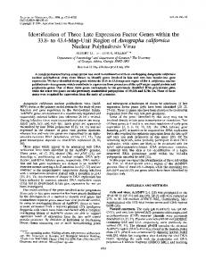Nuclear Polyhedrosis Virus - Journal of Virology - American Society for ...