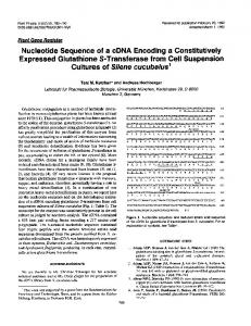 Nucleotide Sequence of a cDNA Encoding a Constitutively Expressed ...