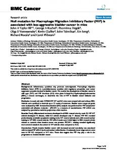 Null mutation for Macrophage Migration Inhibitory Factor (MIF) is ...