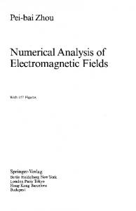 Numerical Analysis of Electromagnetic Fields