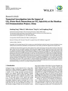 Numerical Investigation into the Impact of CO2-Water-Rock