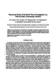 Numerical Study of the Shock Wave Propagation in a ...