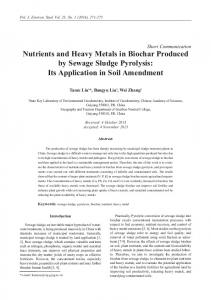 Nutrients and Heavy Metals in Biochar Produced by Sewage Sludge ...