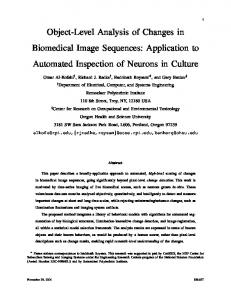 Object-Level Analysis of Changes in Biomedical Image ... - RPI ECSE