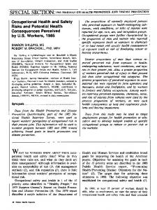 Occupational health and safety risks and potential health ...