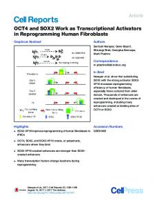 OCT4 and SOX2 Work as Transcriptional Activators in ... - Cell Press