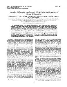 Ocular Chlamydiae - Journal of Clinical Microbiology - American ...