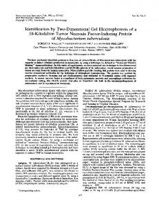 of Mycobacterium tuberculosis - Infection and Immunity - American ...