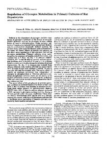 of Rat - The Journal of Biological Chemistry