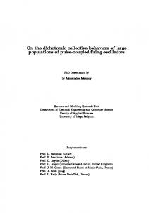 On the dichotomic collective behaviors of large ...