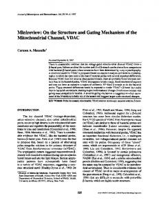 On the Structure and Gating Mechanism of the ... - Springer Link