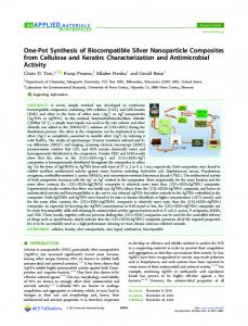 One-Pot Synthesis of Biocompatible Silver ... - ACS Publications