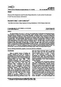 Oocyte Development and Female Reproductive Cycle ...