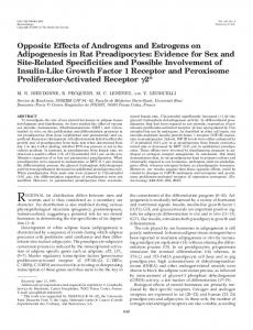 Opposite Effects of Androgens and Estrogens on Adipogenesis in Rat ...