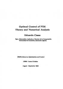 Optimal Control of PDE Theory and Numerical
