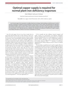 Optimal copper supply is required for normal plant iron deficiency ...