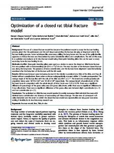 Optimization of a closed rat tibial fracture model - Journal of ...