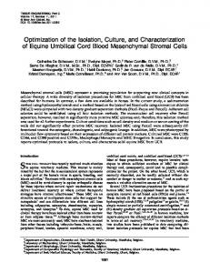 Optimization of the Isolation, Culture, and Characterization of Equine ...