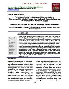 Optimization, Partial Purification and Characterization of Halo