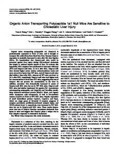 Organic Anion Transporting Polypeptide 1a1 Null ... - Oxford Academic